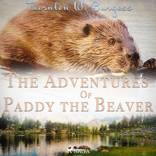 Audiobook The Adventures of Paddy the Beaver (EN) - Thornton W. Burgess - John Lieder
