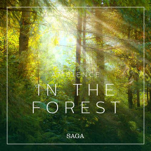 Audiobook Ambience - In the Forest (EN) - Rasmus Broe - Rasmus Broe