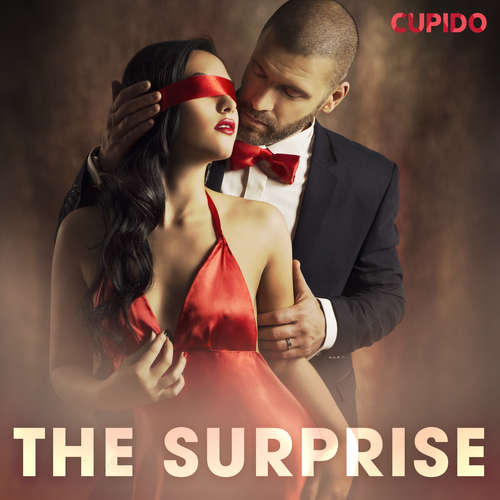 Audiobook The surprise (EN) - Cupido And Others - Alessandra Anderson