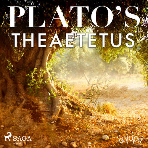 Audiobook Plato's Theaetetus (EN) - – Plato - William Sigalis