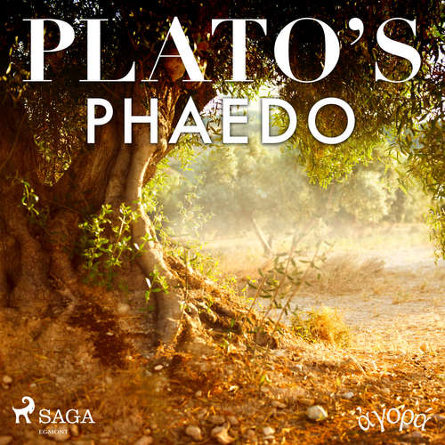 Audiobook Plato's Phaedo (EN) - – Plato - William Sigalis
