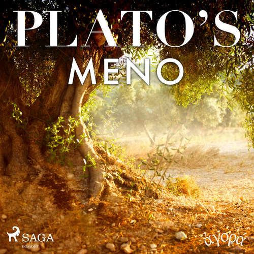 Audiobook Plato's Meno (EN) - – Plato - William Sigalis