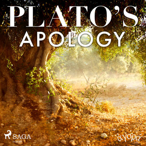 Audiobook Plato's Apology (EN) - – Plato - Albert A. Anderson