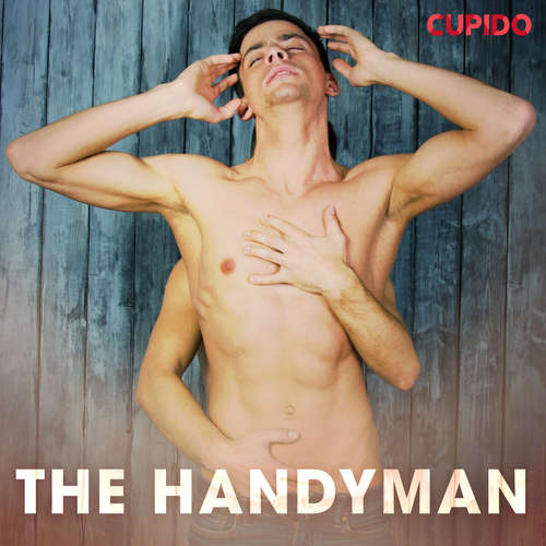 Audiobook The Handyman (EN) - Cupido And Others - Alessandra Anderson