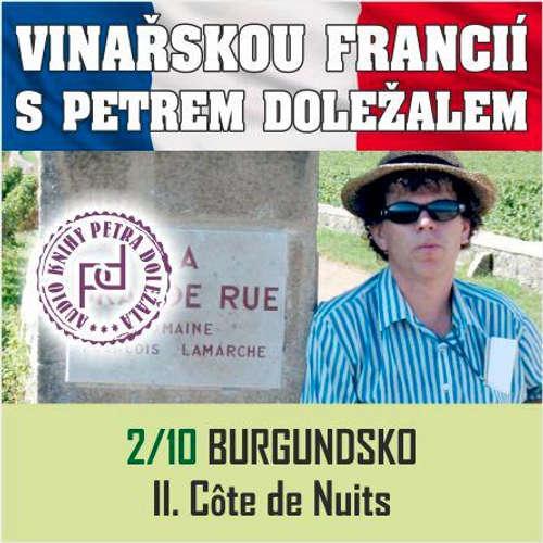 Audiokniha Vinařskou Francií s Petrem Doležalem: Burgundsko (II. Cote de Nuits) - Petr Doležal - Petr Doležal