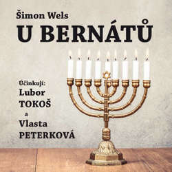 Audiokniha U Bernátů - Šimon Wels - Lubor Tokoš