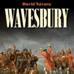 Audiokniha Wavesbury - David Návara - Marek Holý