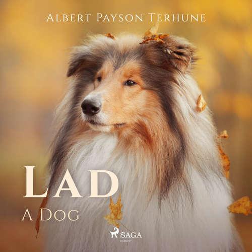 Audiobook Lad: A Dog (EN) - Albert Payson Terhune - Greg Giordano