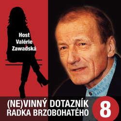 Audiokniha (Ne)vinný dotazník Radka Brzobohatého 8. - Radoslav Brzobohatý - Radoslav Brzobohatý