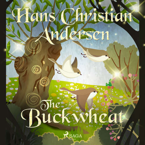 Audiobook The Buckwheat (EN) - Hans Christian Andersen - Alex Lehman