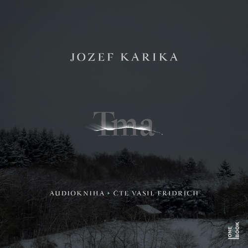 Audiokniha Tma - Jozef Karika - Vasil Fridrich