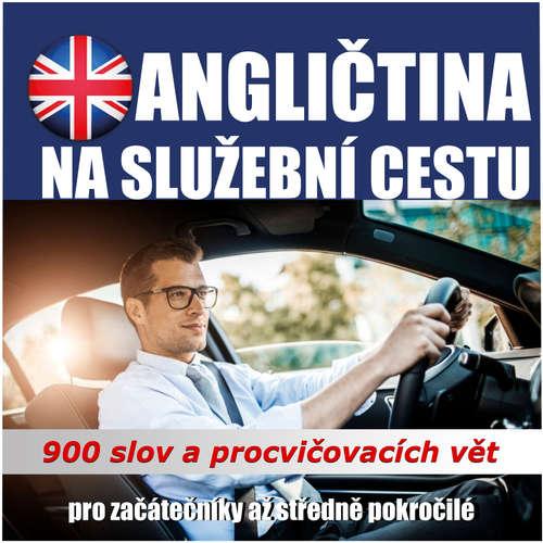 Audiokniha Angličtina na služební cesty - Tomáš Dvořáček - Rôzni Interpreti