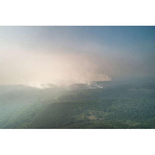 Za požáry na Sibiři mohou lidé