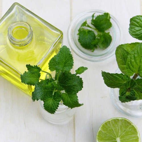 Aromaterapie na každý den, 2. část, Jak provonět kuchyň-Tou-Jou