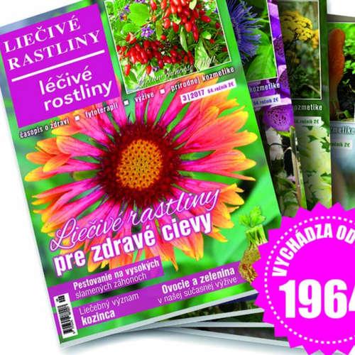 Liečivé rastliny 05 Liečenie medom