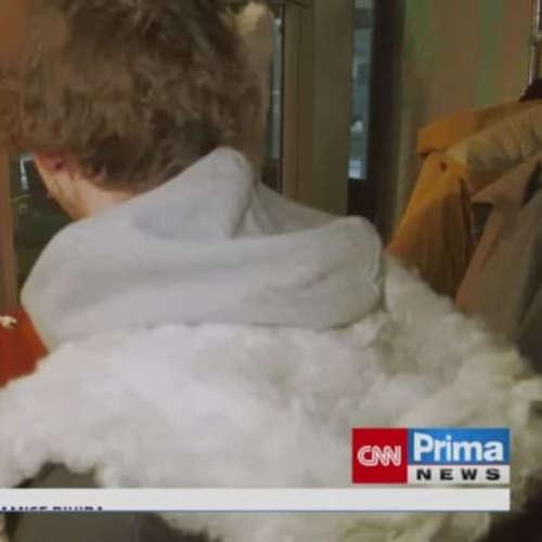 Kožešinu nahradí konopí (zdroj: CNN Prima NEWS)