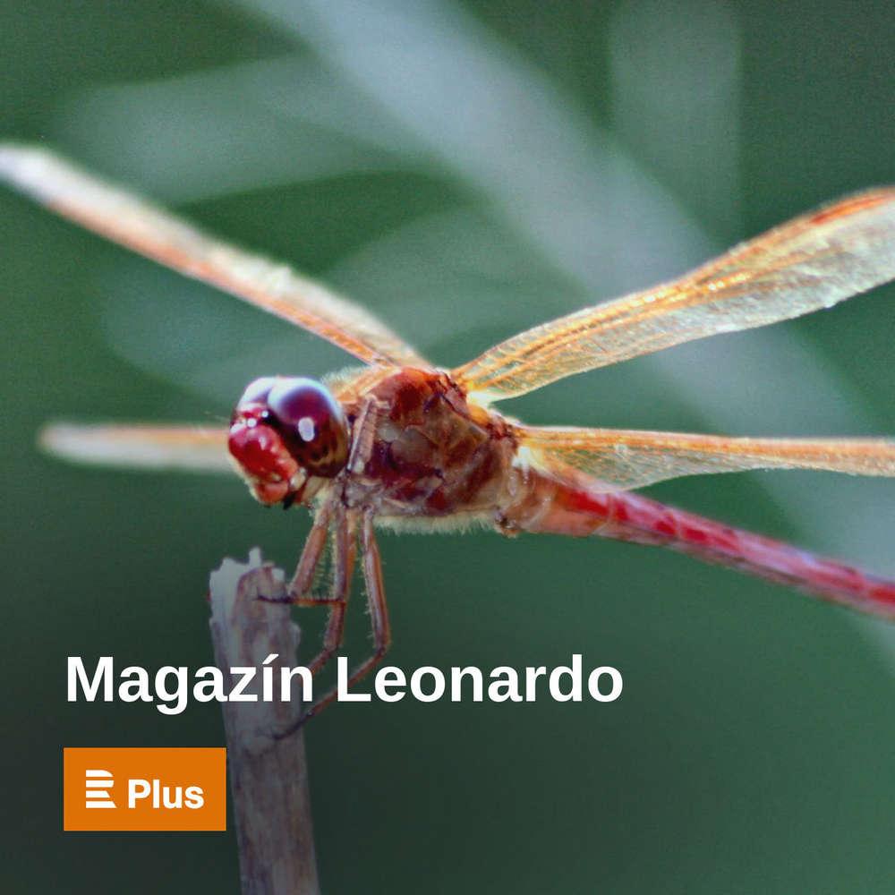Magazín Leonardo - Vědecké zajímavosti podle Veroniky Paroulkové