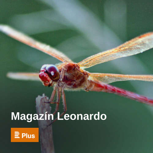 Magazín Leonardo