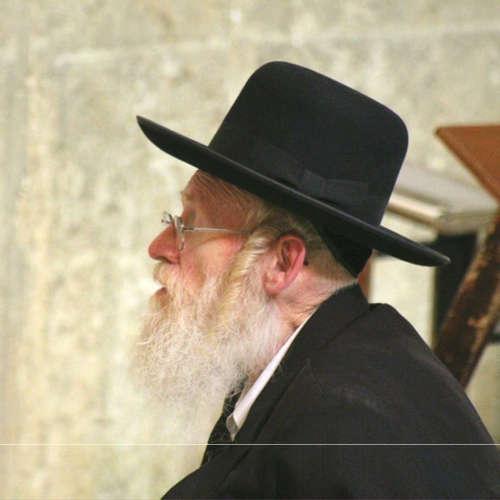 Bubo - Izrael