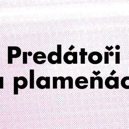 Predátoři a plameňáci - Predátoři a plameňáci: Dalejským a Prokopským údolím do říše mimo čas a prostor