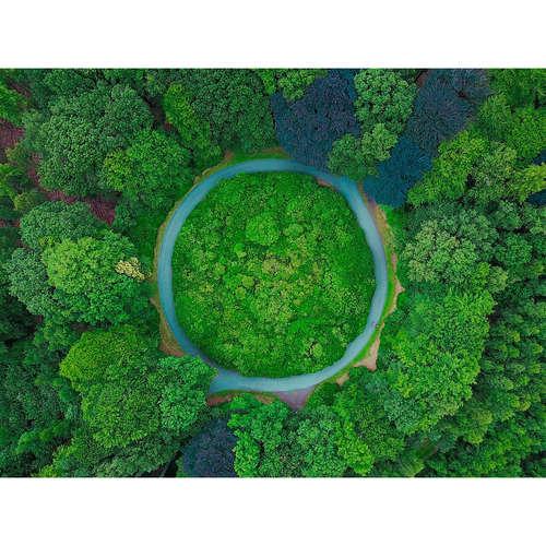 Naj eko témy za rok 2018