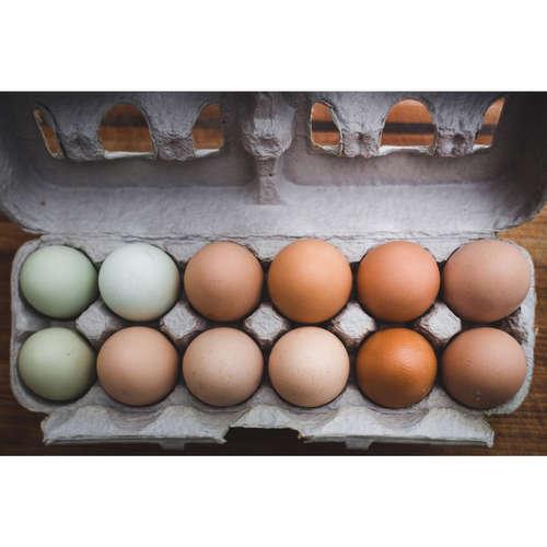 Eko vajcia