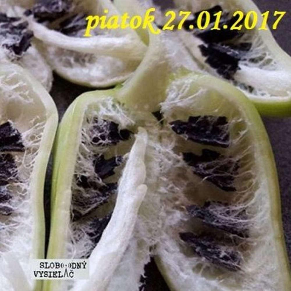 Rie enia a alternativy 04 2017 01 27 AntiGMO Zachrana zdravych semienok
