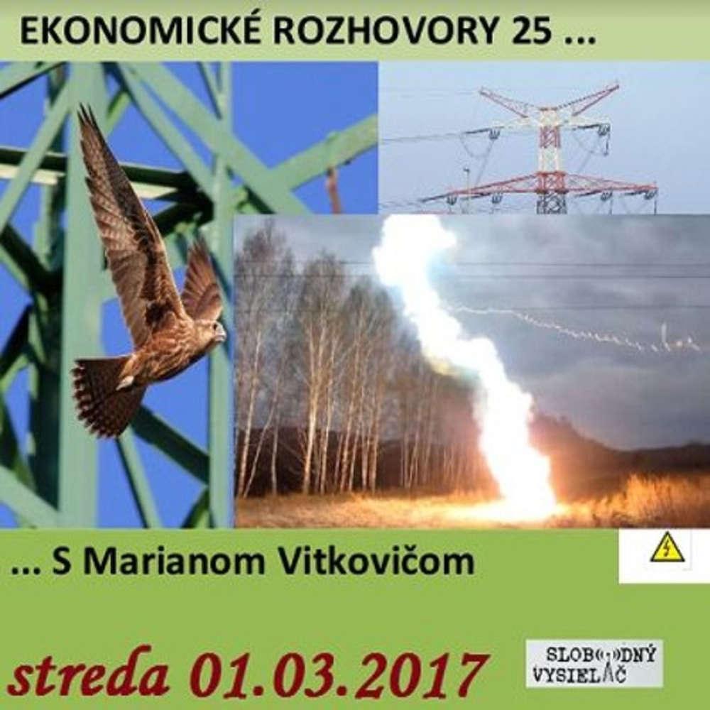 Ekonomicke rozhovory 25 2017 03 01 Vysoke napatie v energetike a ine
