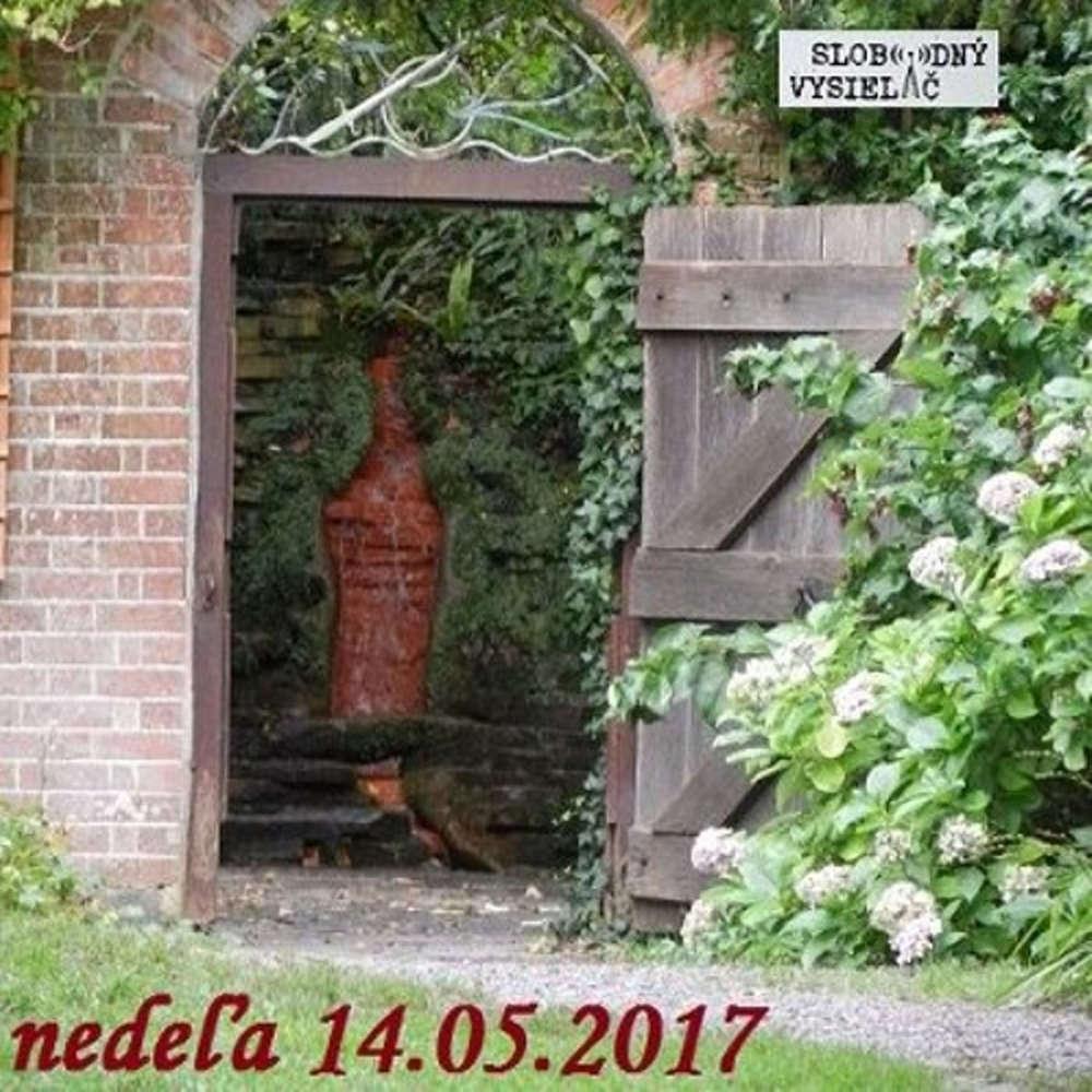 Ornament 09 2017 05 14 Sebelaska