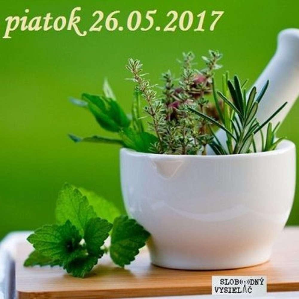 Rie enia a alternativy 21 2017 05 26 Lie enie rastlinami