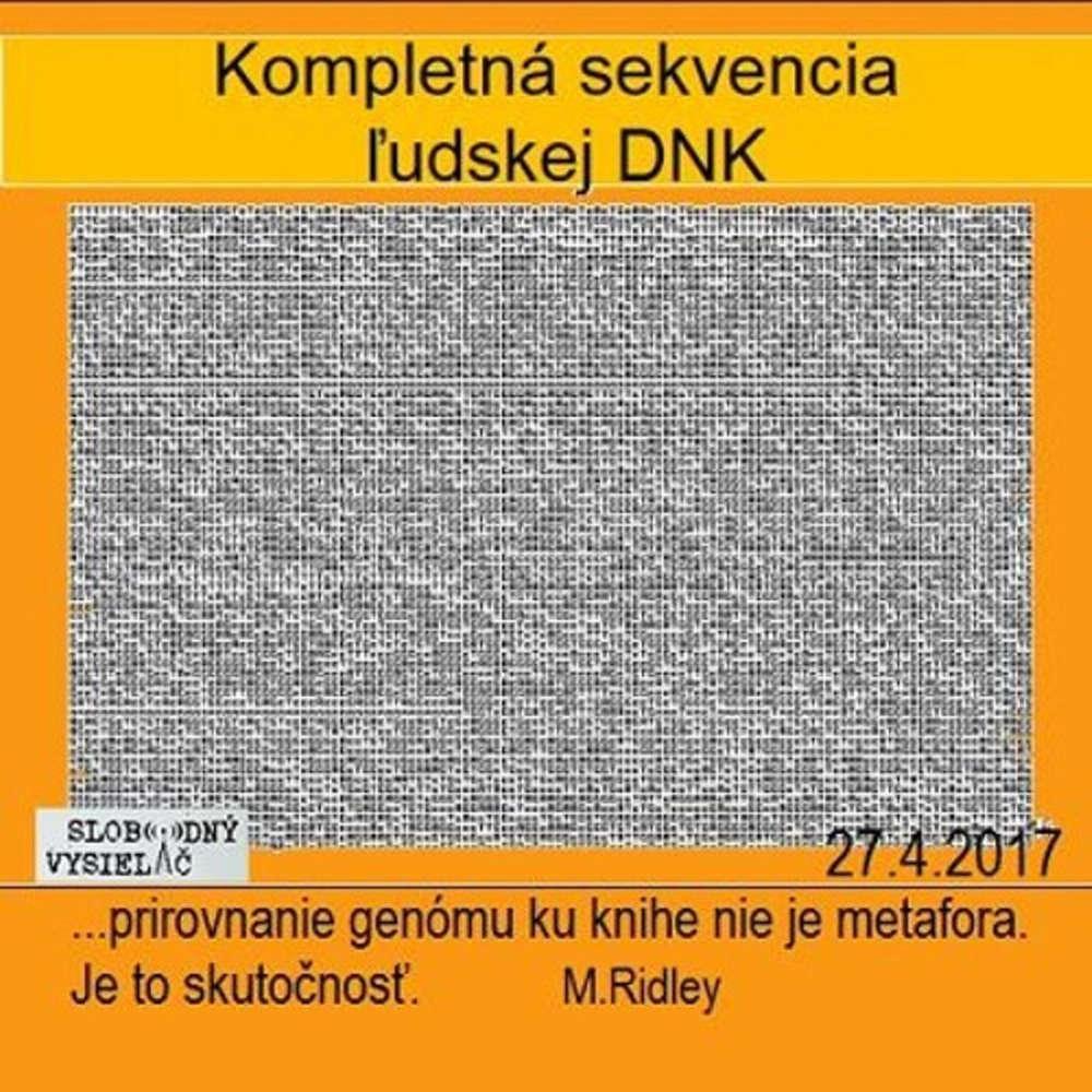 Opony 170 2017 04 27 Genetika v psychiatrii II