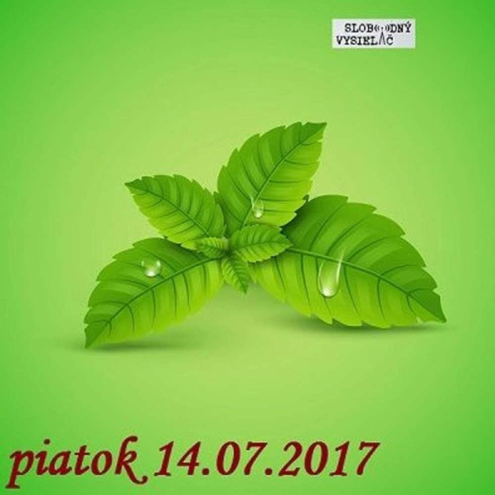 Rie enia a alternativy 28 2017 07 14 Jedla priroda