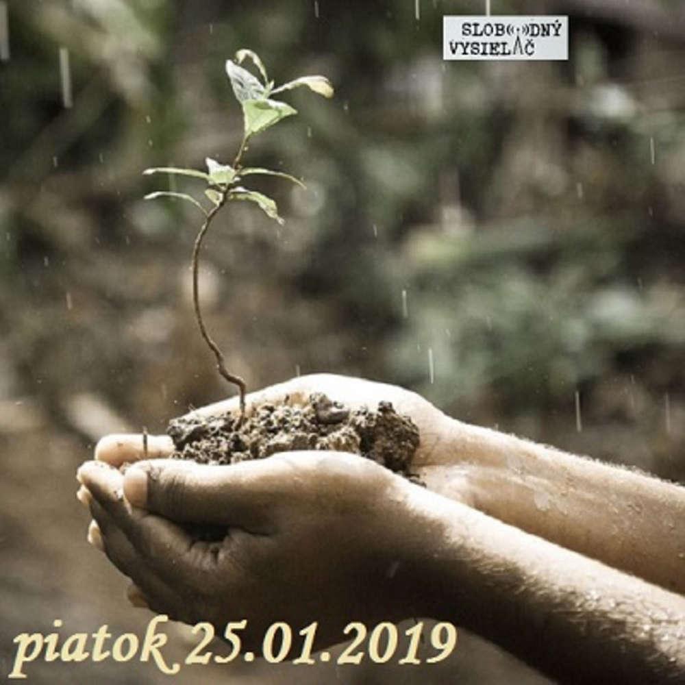 Cesta vzostupu 87 2019 01 25 Zmysel ivota a jeho h adanie