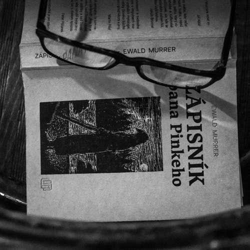 Ewald Murrer - Zápisník pana Pinkeho