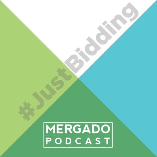 Just Bidding #5 - Jak na reporty na Zboží.cz
