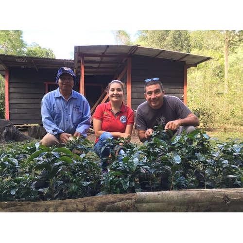 Káva z rukou farmáře: Finca Hartmann, Panama