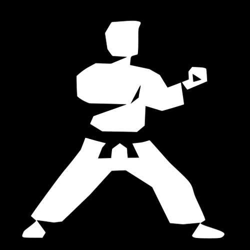 TEST-STACK 33 s Viktorem Terínkem - Apíčka v Karate ( záznam  Livestreamu )