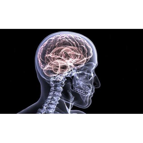 O génovej terapii a jej využití pri liečbe nádorov mozgu