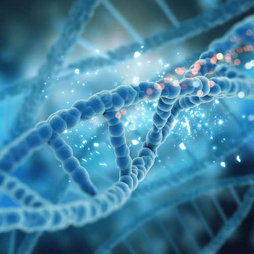 Syntetické bunky III: Môžeme postaviť bunky od základov?