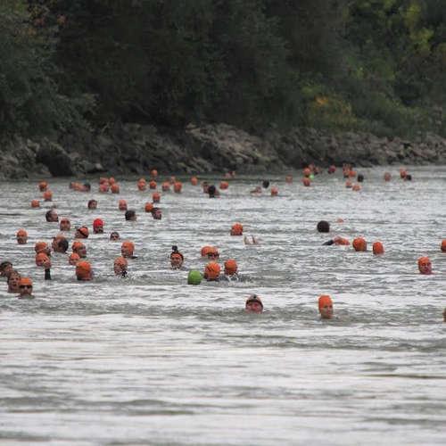 Plávanie cez Dunaj - Trans Danube Swim 2019 (Ľuboš Fellner)