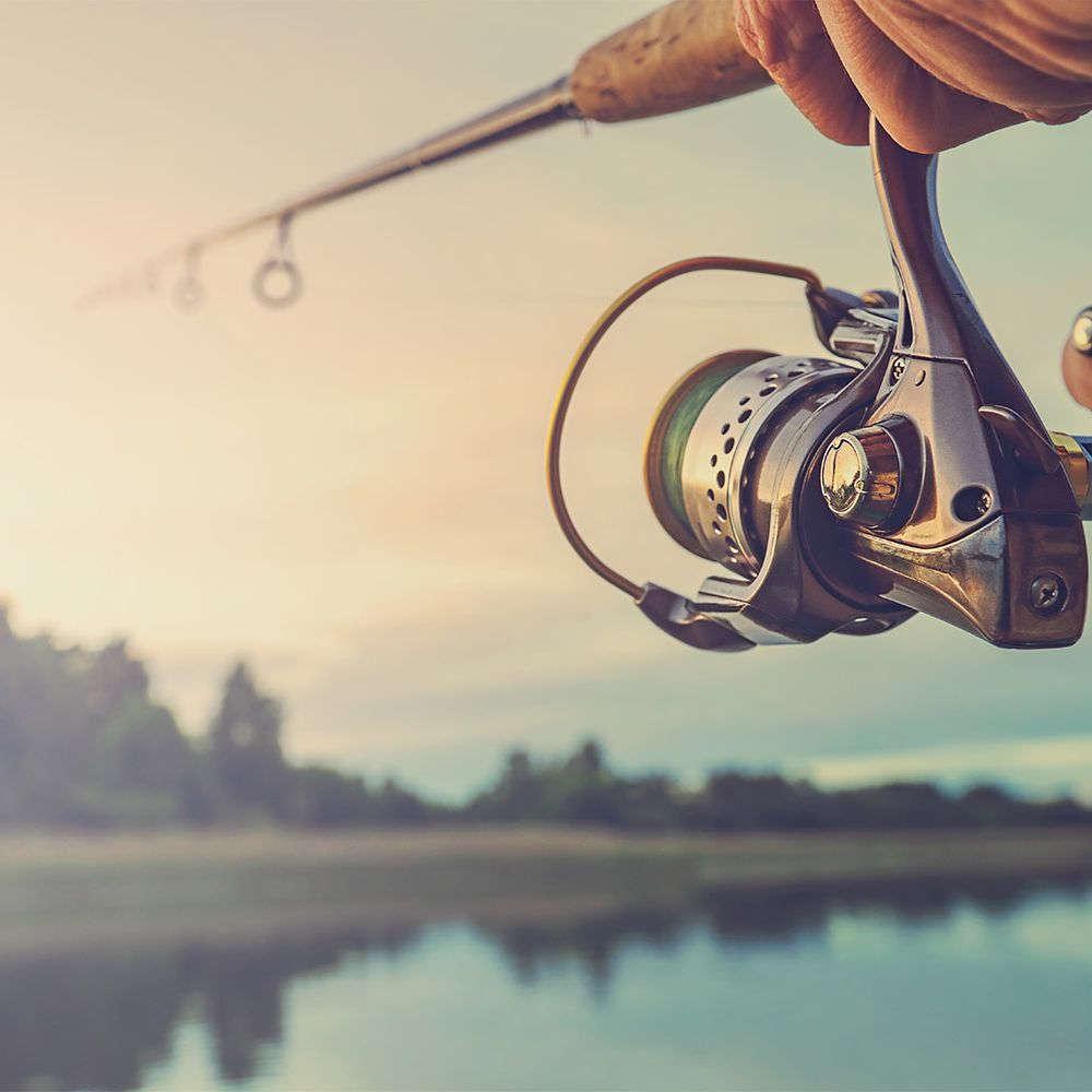 Datovania lietať rybár