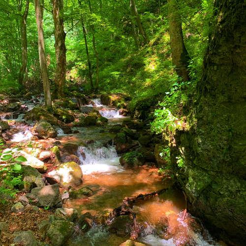 Poď sa túlať najromantickejšou roklinou na Slovensku! (Výlety po Slovensku s One2We)