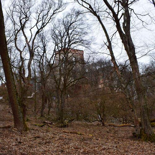 Mekka bratislavských lezcov, hrad Pajštún