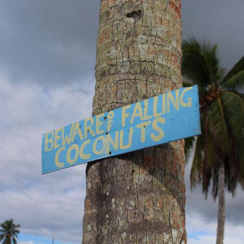S3E4: SAMOA - Mierili na nás kokosmi
