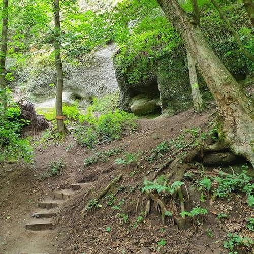 Tajomstvá lesa pri Hontianskych Tesároch