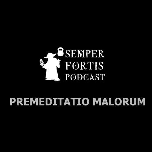 Premeditatio Malorum: Jedna z nejmocnějších technik stoického arzenálu pro dosažení radosti a duševního klidu