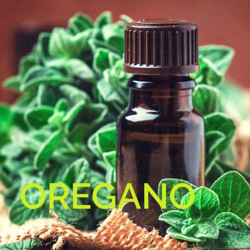 Esenciální olej OREGANO