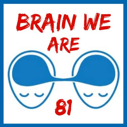 81: Biohacking stresu: Co s šavlozubou kočkou v mozku a proč je stres jako protrhnutá přehrada?