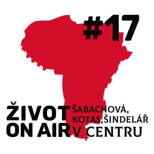 #17_Šabachová, Kotas, Šindelář_V centru
